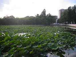 Green lake, Kunming